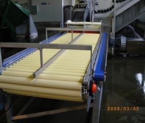 inspection-conveyor